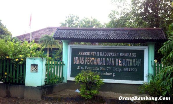 alamat-kantor-dinas-pertanian-dan-kehutanan-kab-rembang.jpg